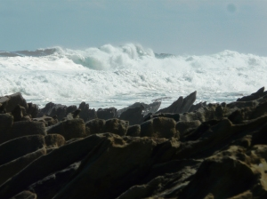 Sea and rocks,waves